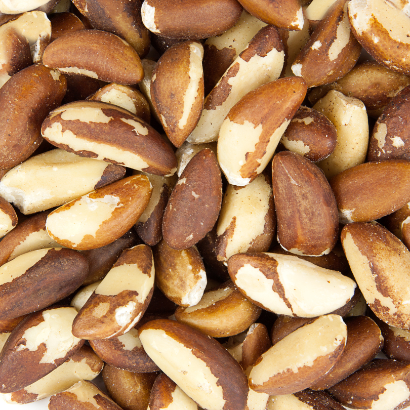 Ten Things You Should Know About Brazil Nuts